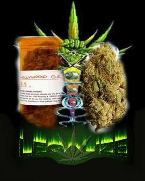 111 Legalize